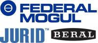 Federal-Mogul - Beral - Jurid